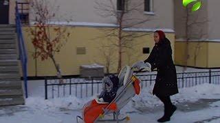 Женщины на Ямале за время отпуска по уходу за ребенком могут получить профессию