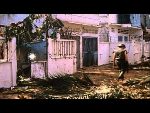 Dead American soldiers lying on litters while Vietcong are led out of buildings i...HD Stock Footage