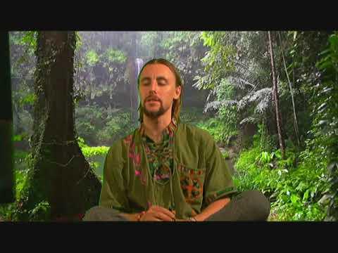 Plant Activation Meditation - Atom Rose
