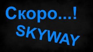 Skyway на выставке