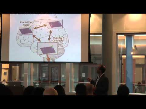 Neurobiological Foundations of Economic Choice - Professor Paul Glimcher