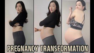 임신 주수별 배 크기 변화   임신초기부터 산후까지  …