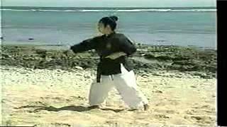 Sensei Shimpo Matayoshi Kobudo Video