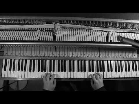 Rostam Batmanglij - Doc´s Song (Cover)