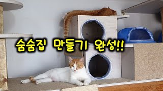고양이 숨숨집 완성!!(힘들어 내일 놀아 줄게)