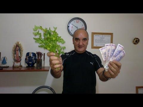 Feng shui para atraer m s dinero doovi - Feng shui atraer dinero ...