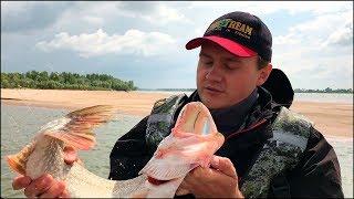 Рыбалка с лодки. Джиг 2018. ЕСТЬ КОНТАКТ! Поиск рыбы летом на реке. Тест силиконовых приманок Intech