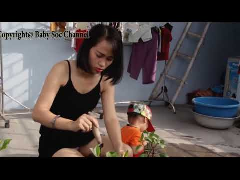 The Morning Routine Of Single Mom And Children  ❤ Baby Soc thumbnail