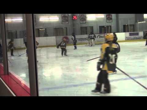 RH - Ottawa Nov 29 Game 2 2013