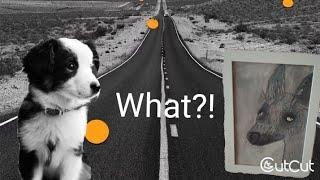 Урок #2 Как нарисовать собаку в черно - белом стиле! Красками - легко и просто, пошагово!