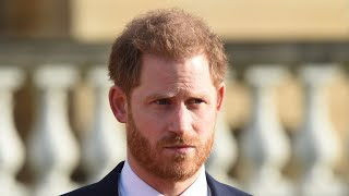 The Firm Should Have Cut Prince Harry Off Months Ago Rowan Dean
