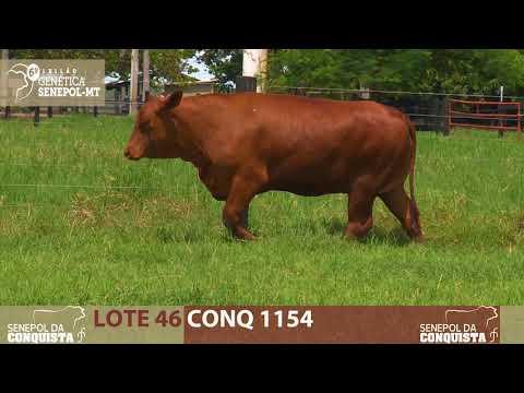 LOTE 46 CONQ 1154