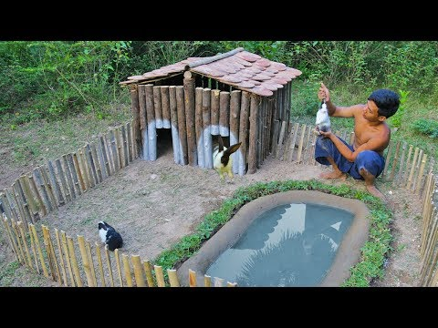 Rescue Wild Rabbit To Build Amazing Wooden House And Mini Swimming Pool For Them