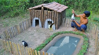 Rescue Wild Rabbit To Build Amazing Wooden House And Mini Swimming Pool For Them thumbnail