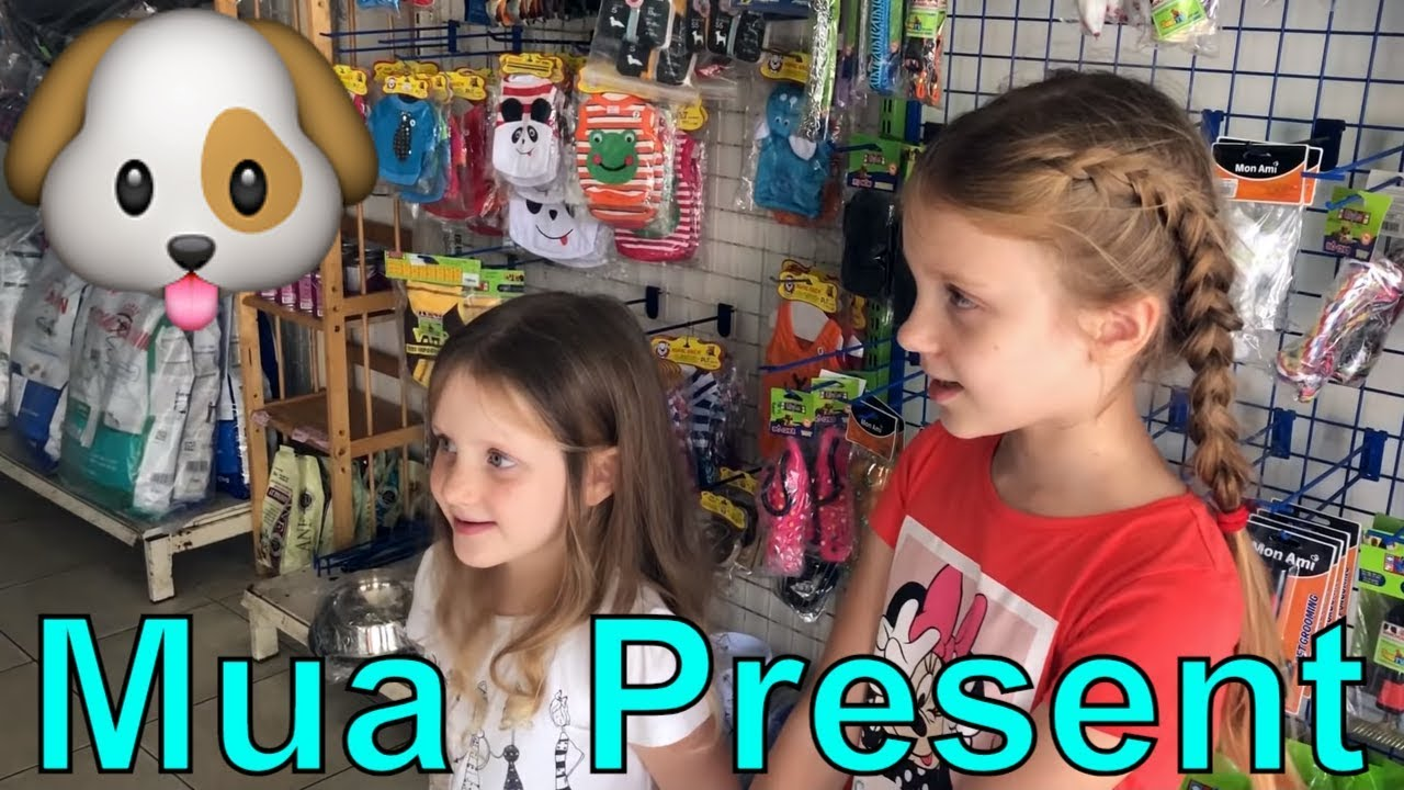 Present for Chelsi. Stefi và Emi tìm cửa hàng thú cưng ở Vũng Tàu để mua quà cho con vật nuôi