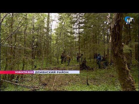 Поисковый отряд «Находка» обследовал обломки советского самолёта времён Великой Отечественной войны