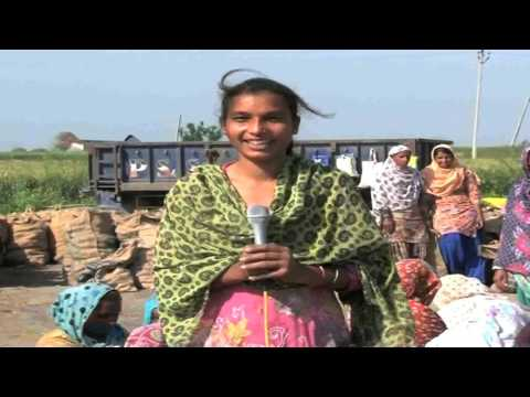 Diversification in agriculture | Success Story of Jaspal Singh Ludhiana Punjab