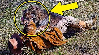 A Guy Fed a Trapped Wolf for 7Days Then 5Years Later They Met Again In The Forest