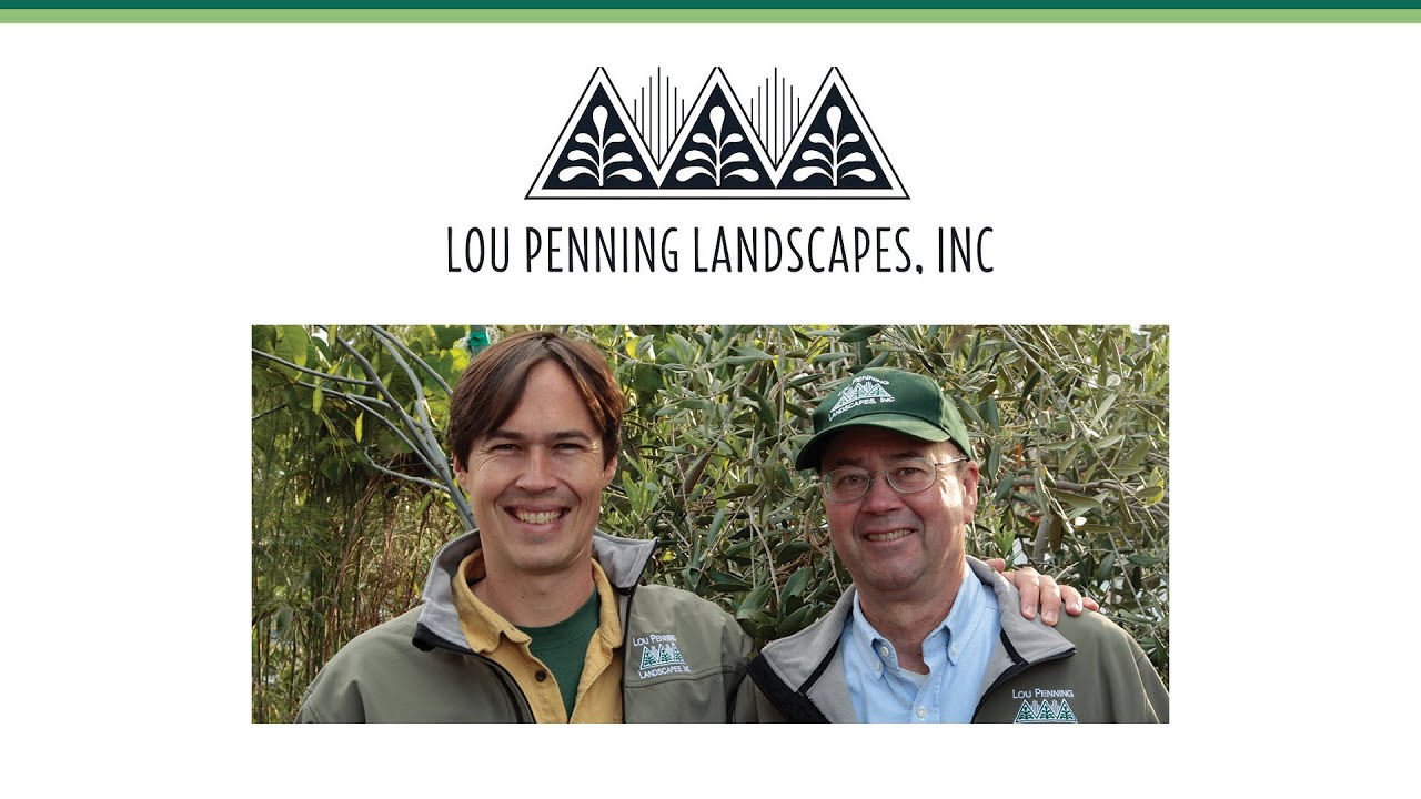 Lou Penning Landscapes 30th Anniversary