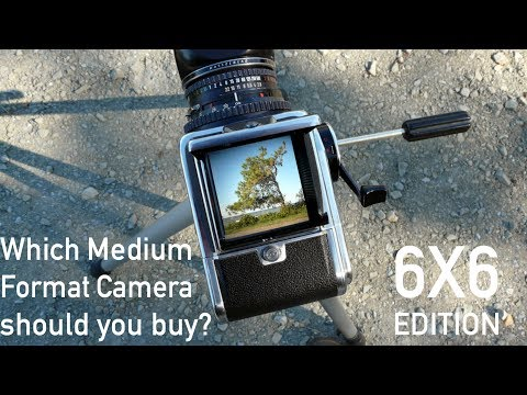 Which 6x6 Medium-Format Camera Should You Buy?