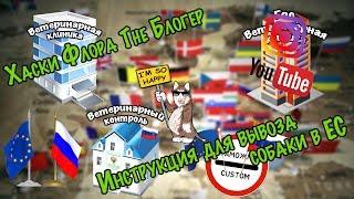 Хаски Флора The Блогер - Спроси Фло: Инструкция для вывоза собаки в Европу (ЕС)