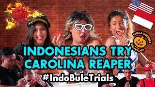 Video #IndoBuleTrials: Indonesians Try Carolina Reaper (feat. Rio Ardhillah) download MP3, 3GP, MP4, WEBM, AVI, FLV Agustus 2018