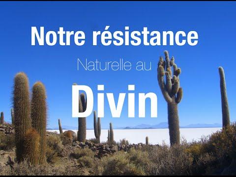 """Notre résistance """"naturelle"""" au divin"""