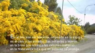 Jaime Torres y Ariel Ramirez - El Cóndor pasa