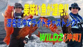 美味い魚が連発!?渡名喜近海[沖縄]でライトキャスティングジグ!![WILD2] thumbnail