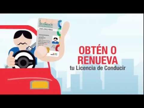 Módulos De Licencias Chiapas Youtube