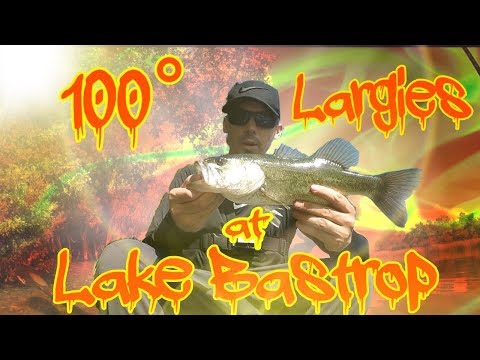 100° Largies At Lake Bastrop