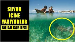 Okyanusun Derinliklerinde Yaşayan İlginç Topluluk