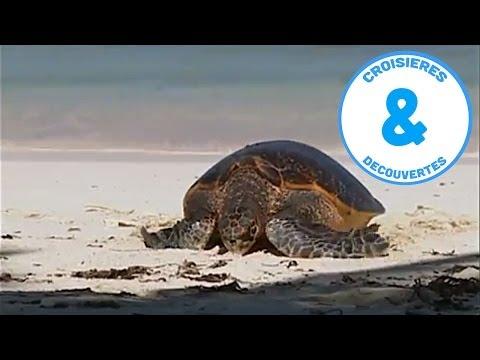 Les Seychelles - - croisière à la découverte du monde - Iles aux Trésors - Documentaire