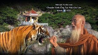 Chuyện Linh Ứng Tại Núi Chứa Chan Gia Lào (The Spiritual Story at Chua Chan Gia Lao Mountain)