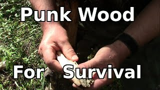 Punk Wood - Backwoods Tips For Fire Use