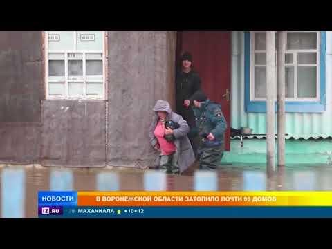 В Воронежской области затопило почти 90 домов