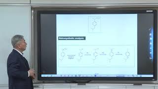 유기합성 및 생유기화학-14주차-2