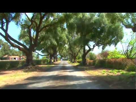 Clairmont Farms - Los Olivos, CA