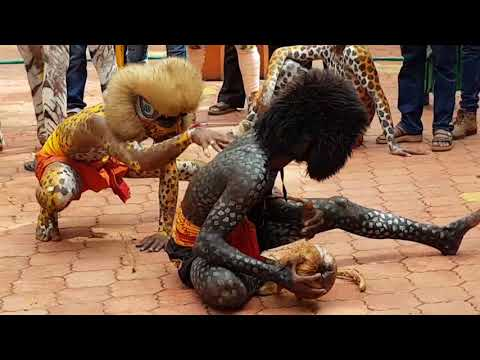 Tiger dance   Pili Nalike Malpe   Pili Vesha   Amazing   Super   Performance 2017