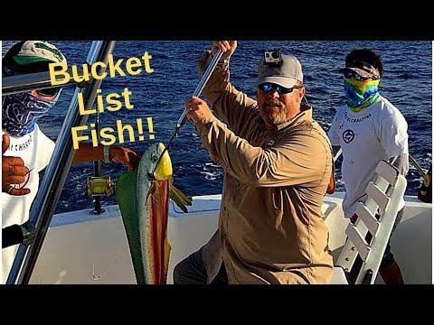 Got A Fishing Bucket List Fish! Cozumel, Mexico 2018! #MexicoFishing #Cozumel #MahiMahi