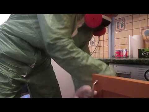 Стандартная обработка от тараканов