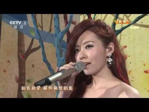 一辈子朋友 | Bằng hữu cả một đời - Dương Khôn & Trương Lương Dĩnh | 杨坤 张靓颖