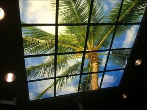 Ceiling Art and Decorative Light Lens