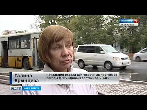 Вести-Хабаровск. Первый снег в Высокогорном