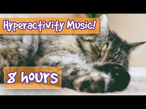 Anti-Hyperactivity Music! Soothing Music to Calm Your Nervous or Hyper Cat. Soothe Stress, Anxiety🐈