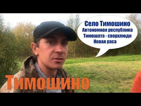 Автономная республика Тимошино / Тимошата - сверхлюди / Костромская область, Макарьевский район