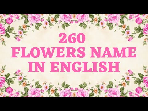 260 FLOWERS NAME IN ENGLISH