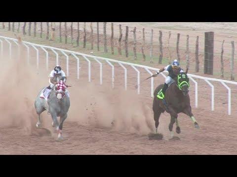 Carreras de Caballos en Ortiz Son  Taste La Alameda 16 de Julio 2017