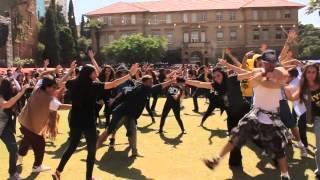 Twerk Badinga AUB Outdoors 2014 Flashmob Performance Welcome To New York Lyne Gandour