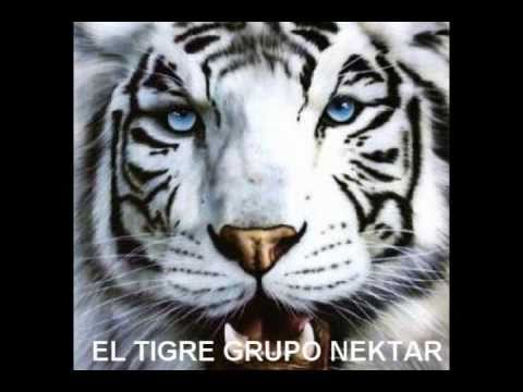 GRUPO NEKTAR  EL TIGRE